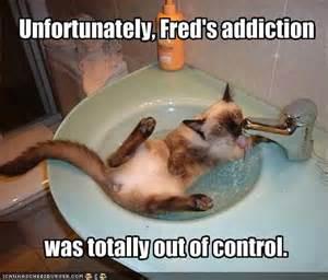 addict-funny_4629451806804022