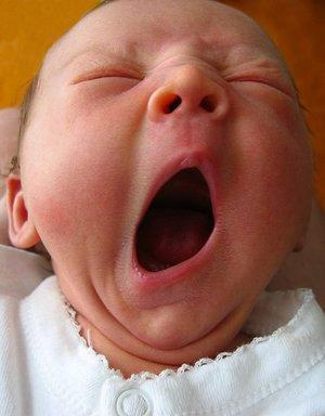 300px-newborn_sleep