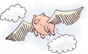flying-pig-300x184