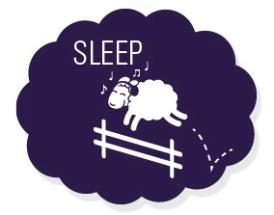 sleep_sheep