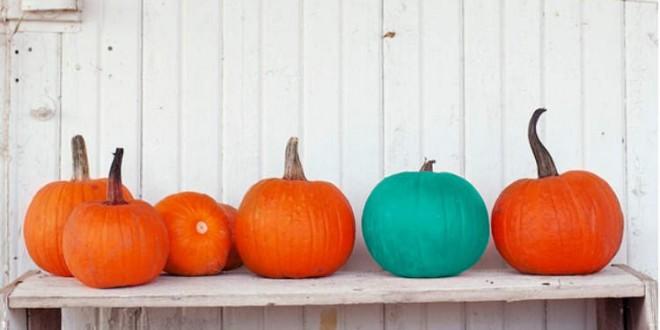 teal-pumpkin-660x330