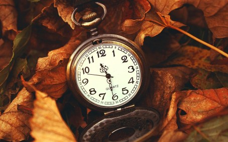 macro-watch-time-leaves-autumn-hd-wallpaper.jpg