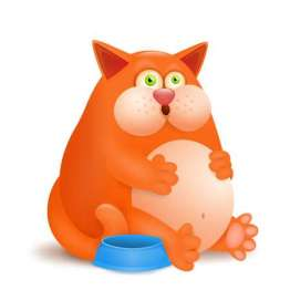 65190869-stock-vector-fat-glutton-ginger-cat-with-empty-bowl-on-white-background-vector-illustration.jpg