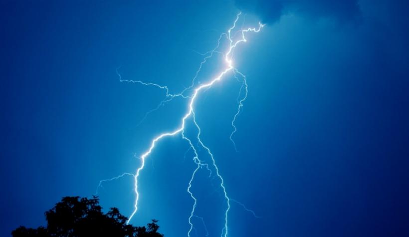 Lightning-bolt-kills-cows.jpg